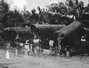 Ambrose Ceylon (Sri Lanka ) Kandy