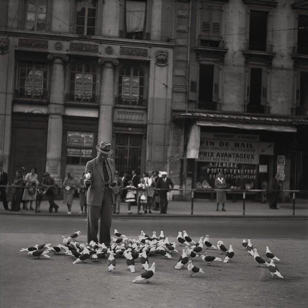 The Pigeon Man